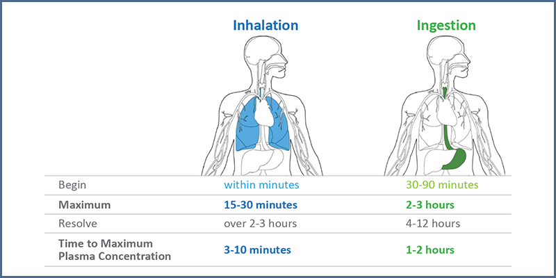 Figure 2 – Timelines for psychoactive effects following THC inhalation or ingestion